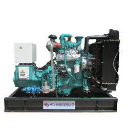Generator van het Gas van de Macht van Genset van het Gas van de vernieuwbare Energie de Groene