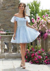 Hellblaues Abschlussball-Kleid weg vom Schulter-Organza, der Brautjunfer-Abend-Cocktailkleid bördelt