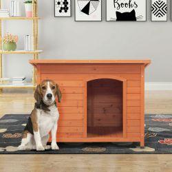 Mobilia dell'animale domestico isolata legno della Camera di cane di Cruz