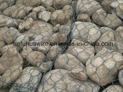 L'eau hexagonale du Projet de conservation de tissus de fils de maillage de gabions