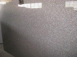 Bruine Countertop van de Keuken van de Tegels van de Vloer van de Steen van het Graniet/Keuken/Badkamers