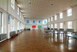 De Houten Bevloering van de Esdoorn van de Sporten van het Hof van de Bal van de pingpong