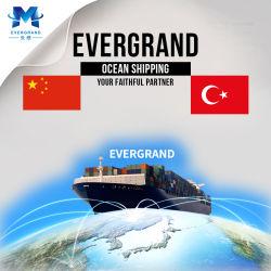 Berufschina-Agens-Seeverschiffen-Service von China nach die Türkei/Istanbul/Mersin/Ambarli/Izmir/Izmit