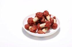 개 개를 위한 오리 고기는 애완 동물 제품 개밥을 취급한다