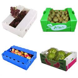 Гофрированное пластиковой упаковки уборки урожая фруктов и овощей