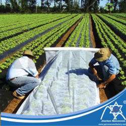 Tessuto non tessuto respirabile di agricoltura pp Spunbond per il coperchio al suolo