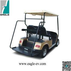 Elevadores eléctricos de carrinhos de golfe, 2 lugares, com carregador Placa permanente, utilizado no campo de golfe