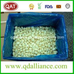 Peladas congeladas rápidamente ajo blanco con alta calidad