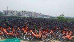 وحيد سرعة مدينة درّاجة إطار صلبة أو [بنيومتيك تير] غير 24 بوصة درّاجة لأنّ رجل ونساء يركب درّاجة
