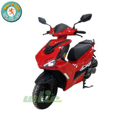 Nouveau design professionnel scooter de gaz de dépliage 50cc/125cc F11 (Euro 4)