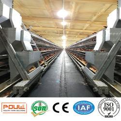 Strumentazione galvanizzata elettrica della gabbia dell'azienda agricola di pollo di strato