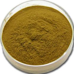 Comercio al por mayor en polvo Extracto de la hoja de loto puro