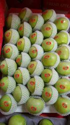 Livro Verde Qin Guan Apple