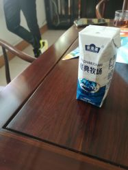 無菌ジュースの煉瓦ミルクのカートン