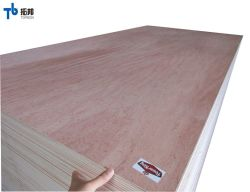 جيّدة نوعية أثاث لازم درجة [كمّريكل] خشب رقائقيّ مع [بينغتنغر] أو [أكوم] قشرة