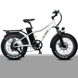 26 inch Elektrische fiets 750W 48V Elektrische stadsfiets 7 Snelheden LCD-scherm lithiumbatterij