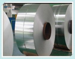 Blatt-Ring-Stahlstreifen des Edelstahl-SS316