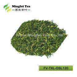 Chinese Organische Groene Thee Sencha 8912 gruisthee van /FV-TXL-OSL120/sencha (de EU Standaard/Japan/America)