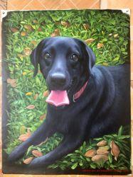 Nach Maß Segeltuch-Wand-Kunst-Farbanstrich des Hundeportraits