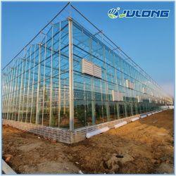 Installation facile intelligent de verre multi-span grandes exploitations agricoles serre avec système hydroponique & système NFT pour les tomates/fleurs ou de légumes/concombre