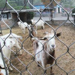 Зоопарк сетку из нержавеющей стали корпус животных проволочного каната сетка для птиц вольере