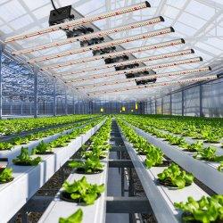 Hoch entwickelte Landwirtschafts-Gartenbau-Beleuchtung LED wachsen helles 640W LED wachsen Beleuchtung für wachsen Zelt