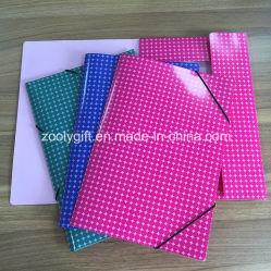 Os documentos a cores A4 na pasta de Arquivo Arquivo de Papel Cartão Encerramento elástica