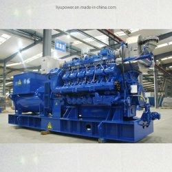 Gruppo elettrogeno ad alta tensione per biogas Ly1000gh-Z per centrali distribuite