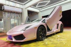 Il kit speciale Lamborghini per porte Lambo di seconda generazione