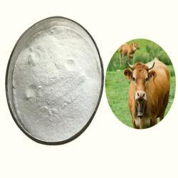 API vétérinaire ceftiofur Hydrochloride cas 103980-44-5 pour animaux