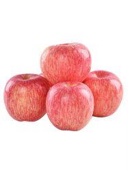 Sacs de papier rouge de légumes frais pommes Qinguan Fruits