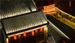 Casa de arquitectura exterior LED de iluminação do teto da Série de projeção em destaque