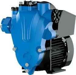 CHV-X2 Full automatic frio e água quente self vórtice de sucção da bomba eléctrica