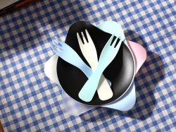 Geburtstag Einweg Transparent Glitter Natürliche Einweg Bagasse Platte Komponente Geschirrspüler Und mikrowellenfest Kunststoffplatten mit Silberrand & Einweg