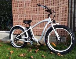 Bici Elettrica Da Spiaggia Attrezzata Con Specifiche Tecniche Elevate Per Sconti