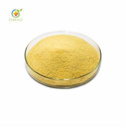 脂肪酸が付いている有機性カボチャシードのエキス
