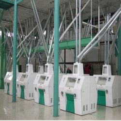 Popular automático de molienda de harina de maíz planta completa fresadora de maíz