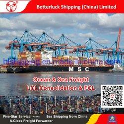 Charleston/USAの海の貨物運送業者への中国からのLCLの出荷か広州またはシンセン