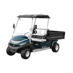 전기 시설 골프 차, 수동 들린 상자를 가진 2개의 시트