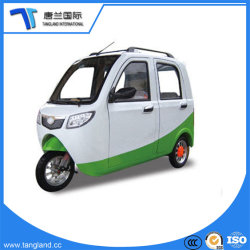 Smart /petite voiture électrique avec 3 roues deux sièges