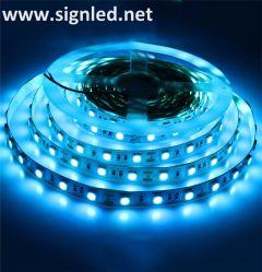 Striscia/nastro di colore LED di colore rosa dell'azzurro di ghiaccio SMD5050 per la decorazione domestica