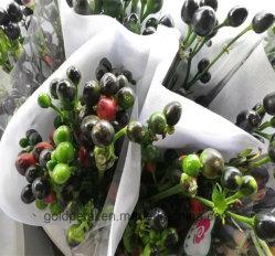 Nouveau Bouquet de fleurs décoratives Poivre Vert Chili