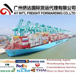 Океана / Грузовые перевозки контейнерных перевозок от/Гуанчжоу/Циндао в Гдыне, Польша