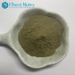 Supplemento ferro di alta qualità Bisglicinato ferroso 20%