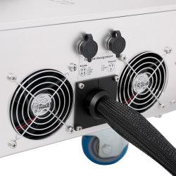 Le plomb Tech LT8020f/LT8030f/LT8050f Pigeon l'anneau de marquage laser Imprimante de l'air