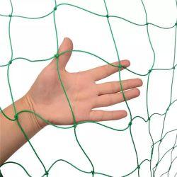 Plástico PP Wire Mesh, Suporte de Compensação de condução para a fábrica de escalada