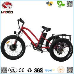 000W Fat Tire Tricycle électrique de frein à disque double