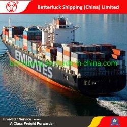 het verschepen van China aan overzeese van Sohar van de Muscateldruif van Oman vrachtlogistiek