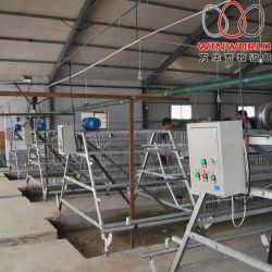 Zimbabwe las aves de granja de pollos de aves 108 Tipo de batería de 3 niveles de un sistema de jaulas de Pollos Parrilleros