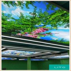 25s PVC Film étirable de décoration de plafond
